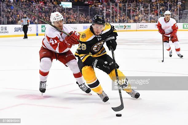 Landon Ferraro of the Boston Bruins skates with the puck against Luke Glendening of the Detroit Red Wings at the TD Garden on April 7 2016 in Boston...
