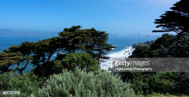 lands end: san francisco - highlywood stock photos and pictures