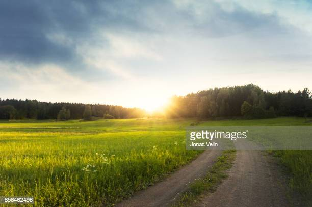 landsakap i sverige - road stock pictures, royalty-free photos & images