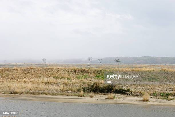 Landscape after an earthquake disaster