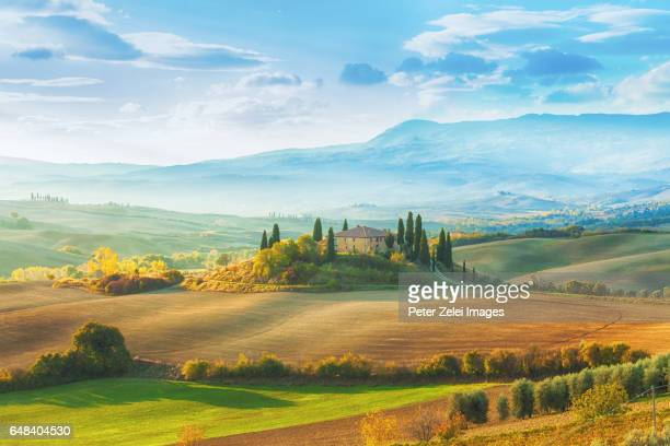 landscape and farm in tuscany, italy - italian cypress stock pictures, royalty-free photos & images