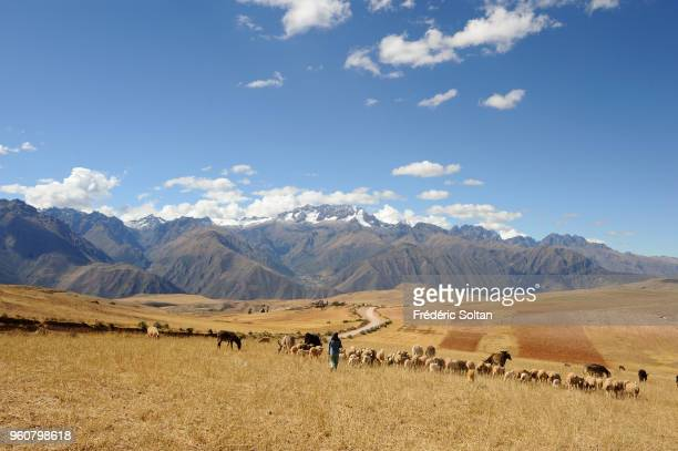 Landscape and old town of Maras in Peru's Sacred Valley Maras found in the Sacred Valley of the Incas near Cuzco at an altitude of 3500 metres near...