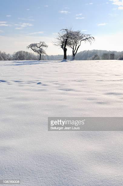 landscape and snow - ravensburg stock-fotos und bilder