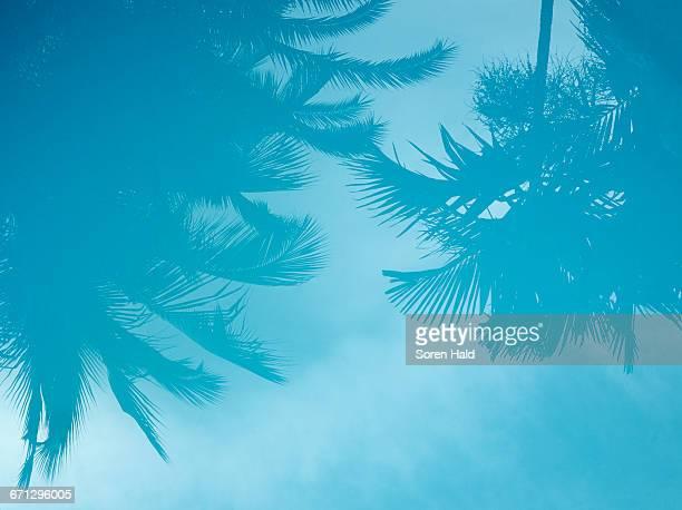 Landscape Anguilla