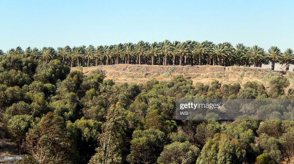 Landscape at Jordan - Israel border : Stock Photo
