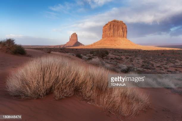 landscape at monument valley navajo tribal park - utah stock pictures, royalty-free photos & images