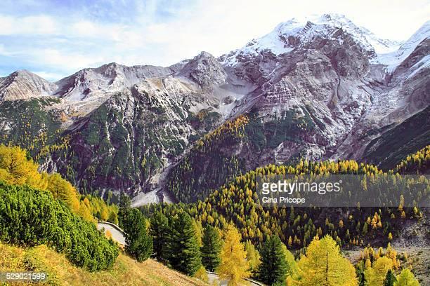 Landscape at Stelvio Pass, Italy