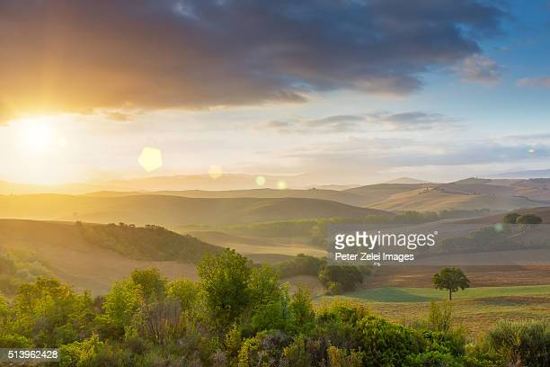 landscape at sunrise, location: val d'orcia, tuscany, italy. - italian cypress stock pictures, royalty-free photos & images