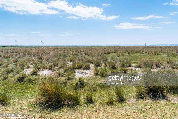 landscape beneath dramatic blue sky at the Vast Prairie