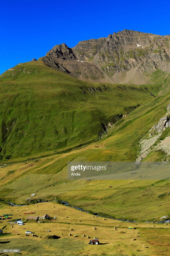 Landscape between the Col de l'Iseran mountain pass and Bonneval-sur-Arc (Savoy, French Alps): haymaking in the valley.