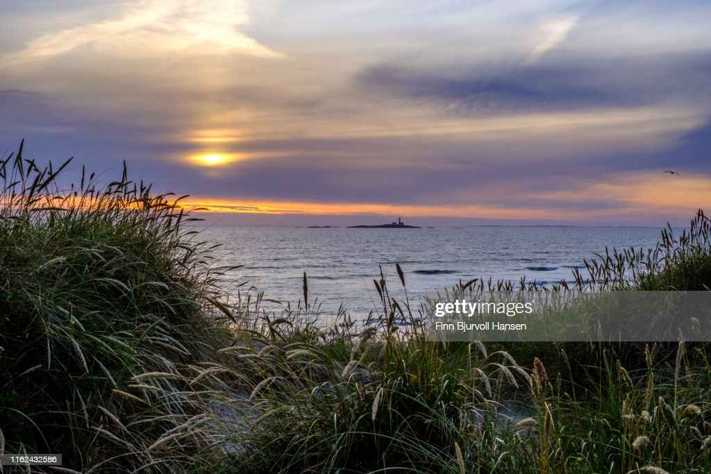 Landscape from Jæren in Rogaland Norway, dunes, gras and straws in the forground, ocean, sunset sky and a lighthouse in the background : Stock Photo