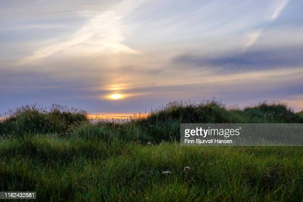 landscape from jæren in rogaland norway, gras and dunes in the foreground, sunset sky in the background - finn bjurvoll - fotografias e filmes do acervo
