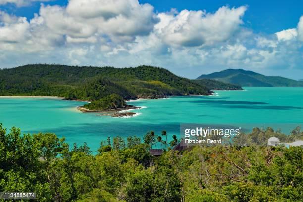 landscape from one tree hill, hamilton island, australia - île d'hamilton photos et images de collection