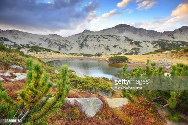 landscape from pirin mountain, bulgaria - pirin national park stock pictures, royalty-free photos & images