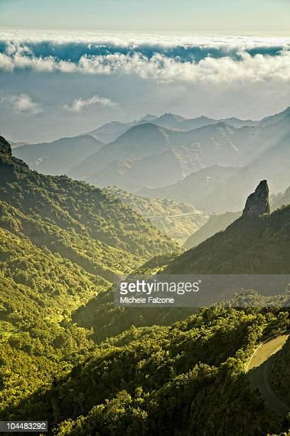 Landscape, Garajonay National Park