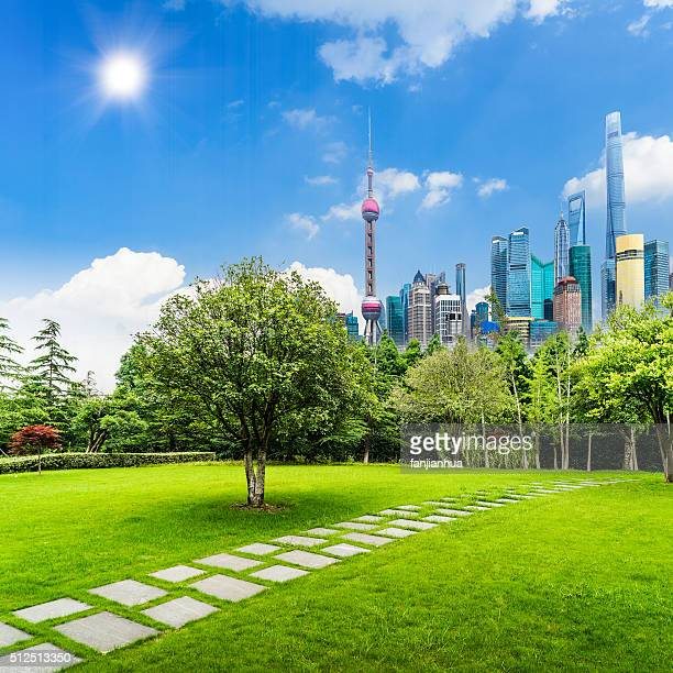Landscape grass prospects the Shanghai Lujiazui city buildings of landmark sunny skyline