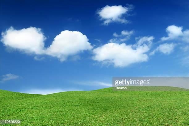 風景-グリーンフィールド