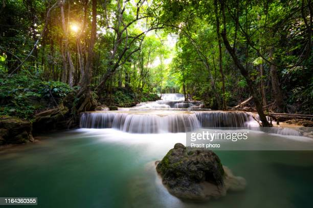 landscape huai mae kamin waterfall firstfloor in srinakarin dam national forest park at kanchanaburi, thailand. tropical rain forest. - カンチャナブリ県 ストックフォトと画像