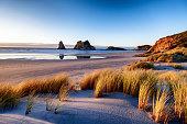 Landscape image of sunset at coastline in New Zealand