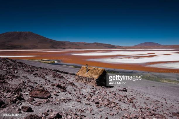 landscape images of a red lagune - altiplano stock pictures, royalty-free photos & images