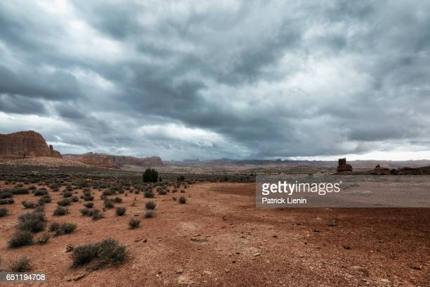 landscape in arches national park, utah, usa - sandy utah stock pictures, royalty-free photos & images