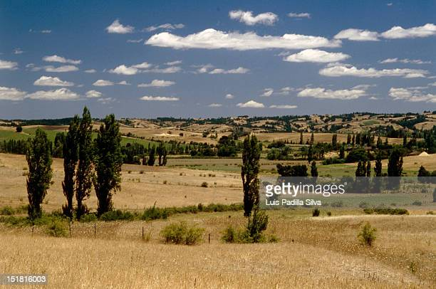 landscape in concepcion, chile - biobio stock pictures, royalty-free photos & images