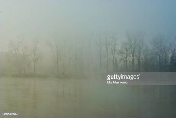 landscape in fog - mia woods photos et images de collection