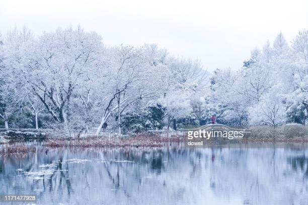 landscape in hangzhou - west lake hangzhou stock pictures, royalty-free photos & images