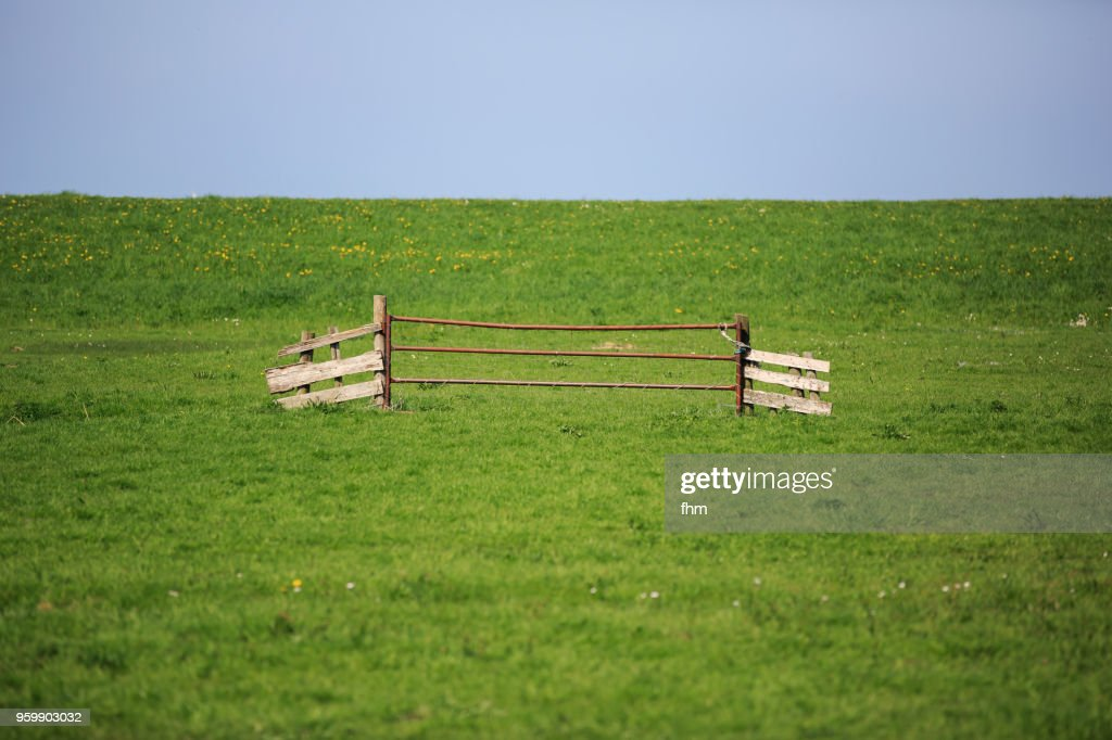 Landscape in Marken, North Holland (Netherlands) : Stock-Foto
