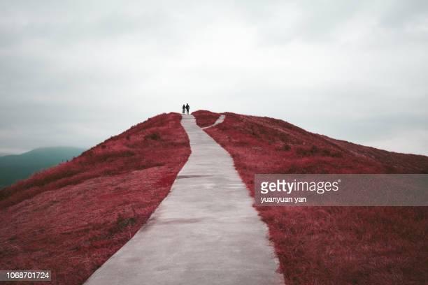 landscape in mount.omuro shizuoka japan - 錯覚 ストックフォトと画像