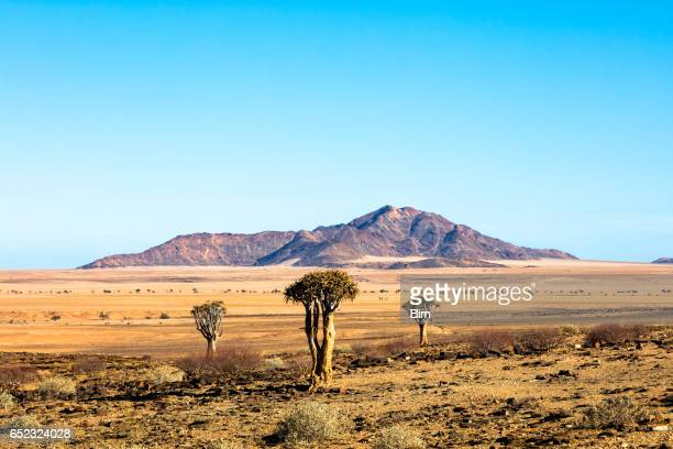 Paisaje en Namibia