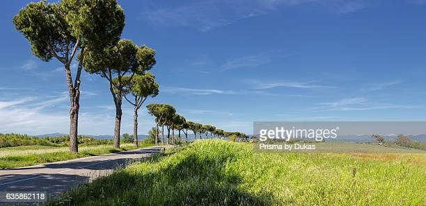 Landscape in Orvieto, Umbria.
