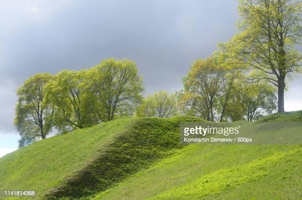 landscape in park in the fortress of lappeenranta - ラッペーンランタ ストックフォトと画像