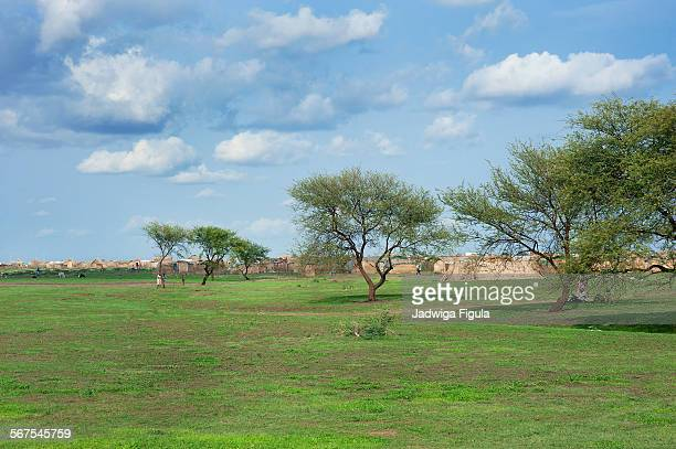 landscape in south sudan - sudan stock pictures, royalty-free photos & images