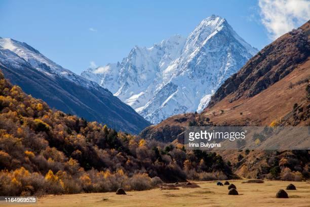 landscape in the countryside of kabardino-balkaria - 北コーカサス ストックフォトと画像