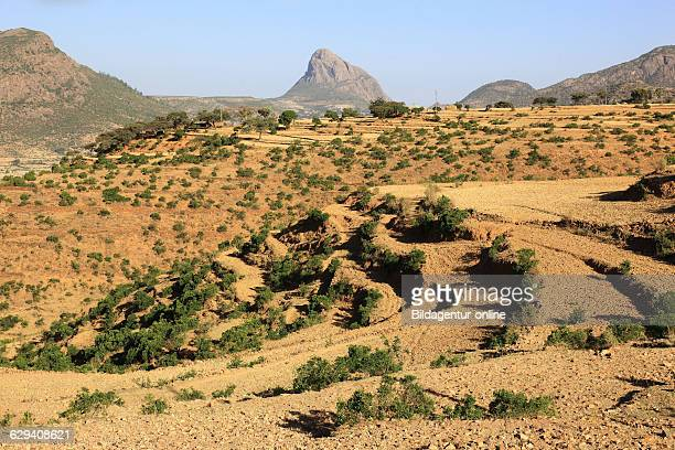Landscape in the mountains Adua Adwa Mountains the historic battlefield of the Italians in Ethiopia