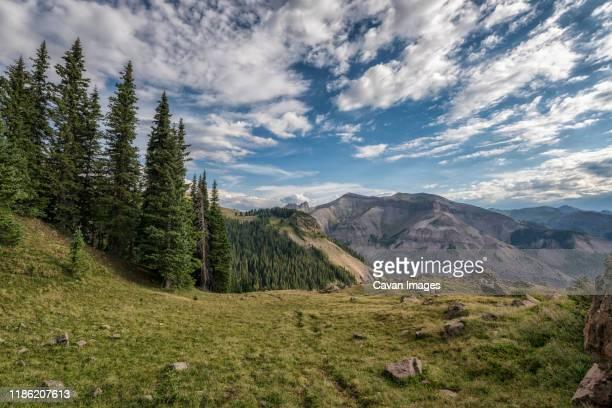 landscape in the uncompahgre wilderness - colorado westliche bundesstaaten der usa stock-fotos und bilder