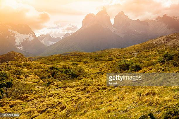 Landscape in Torres Del Paine National Park, Patagonia, Chile