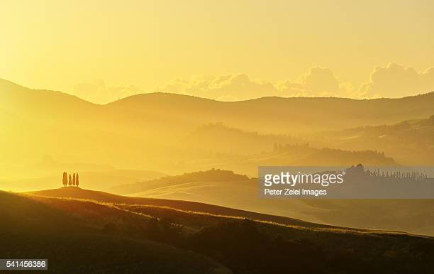 landscape in tuscany at sunrise - italian cypress stock pictures, royalty-free photos & images