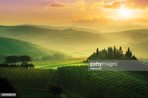 Landscape in Tuscany at sunrise