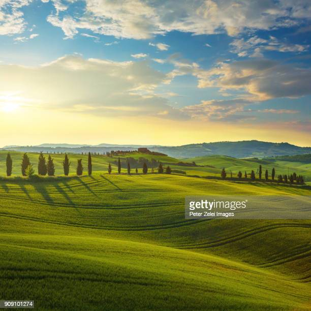 Landscape in Tuscany at sunset