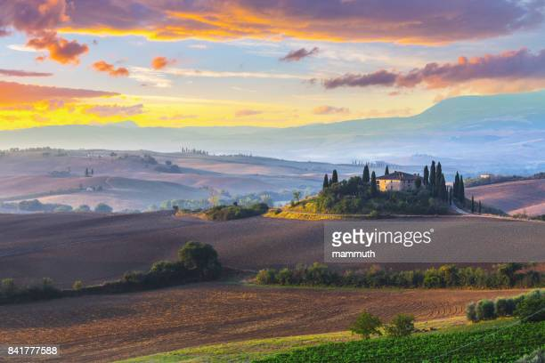 landscape in tuscany, italy at sunrise - san quirico d'orcia stock pictures, royalty-free photos & images