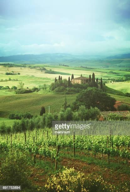 landscape in tuscany, italy - val d'orcia foto e immagini stock