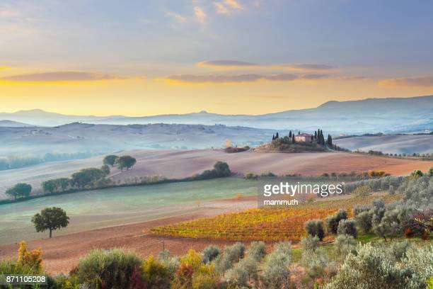 landscape in tuscany, italy - siena italy stock pictures, royalty-free photos & images