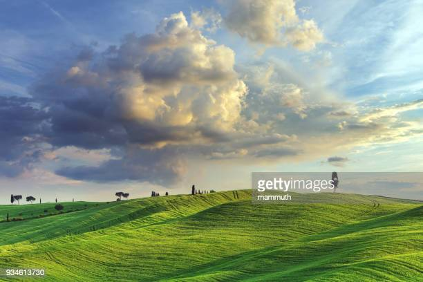landscape in tuscany, italy - rolling landscape stock pictures, royalty-free photos & images