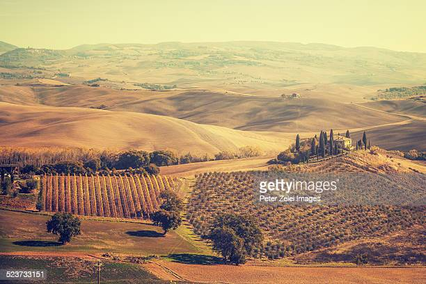 landscape in tuscany - italian cypress stock pictures, royalty-free photos & images