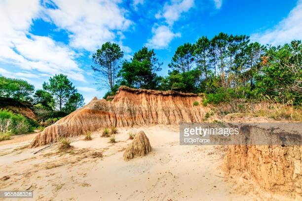 landscape in valle de la luna, gully erosion, uruguay - soil erosion stock photos and pictures