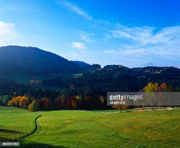 landscape Italy Italia Europe autumn South Tyrol Italia altipiano del Salto