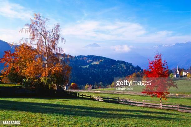 landscape Italy Italia Europe autumn South Tyrol Italia altipiano del Salto Meltina