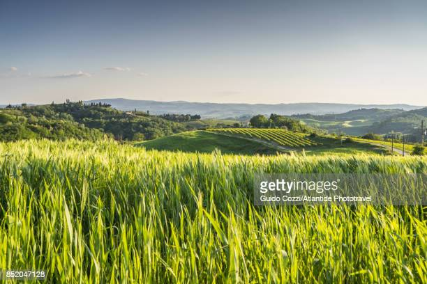 landscape near bacio - paradise stock pictures, royalty-free photos & images